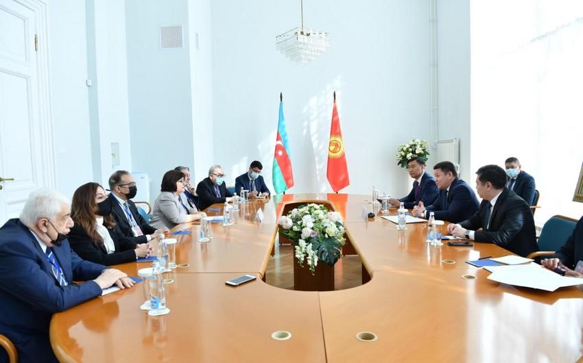 """Sahibə Qafarova: """"Azərbaycan BMT-nin qətnamələrini yerinə yetirərək torpaqlarını azad etdi"""""""