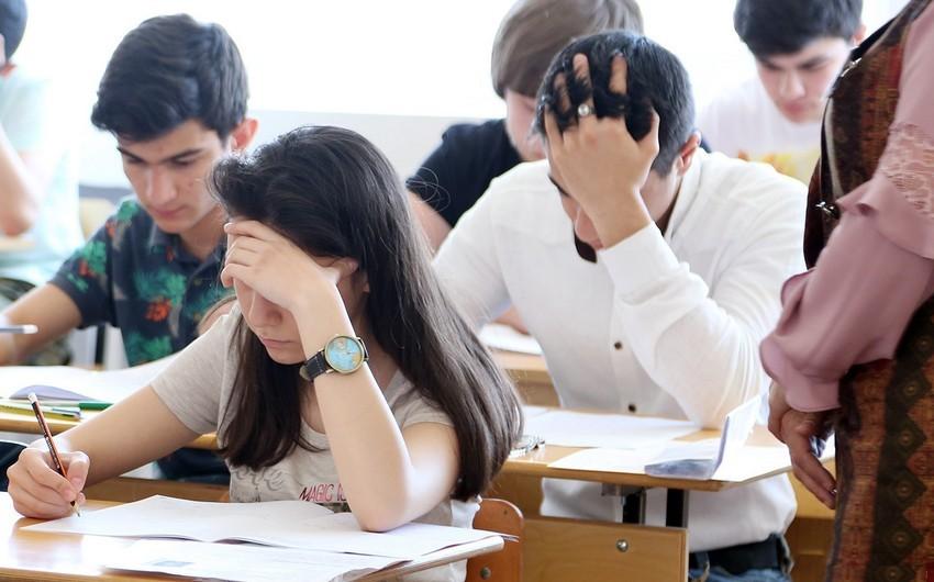 Universitetlərdə bəzi ixtisaslar üzrə 10 240 yeni yer ayrılıb