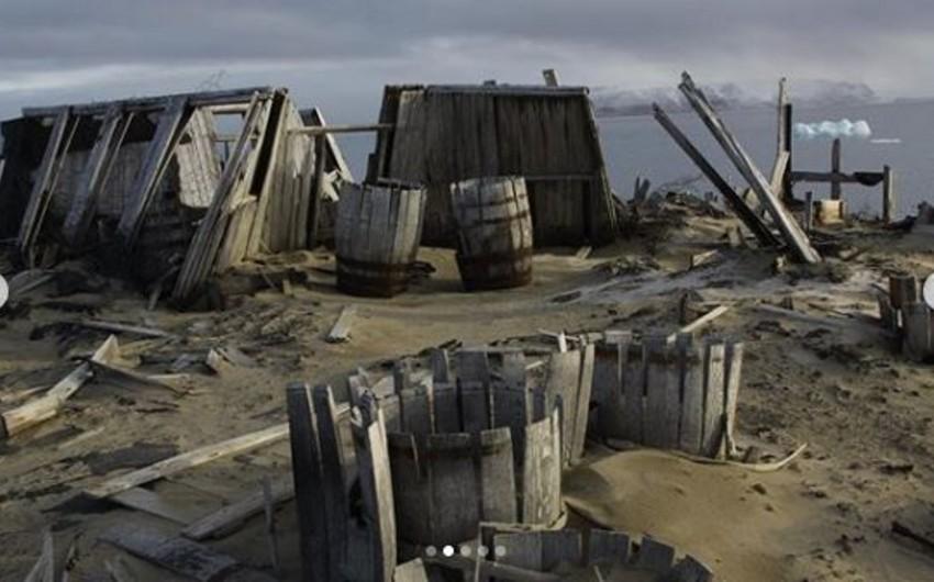 В Арктике обнаружили бочку с кофе 1902 года - ФОТО