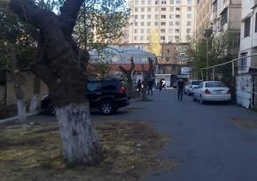 Минэкологии обязало ИВ Баку прекратить работы по обрезке деревьев