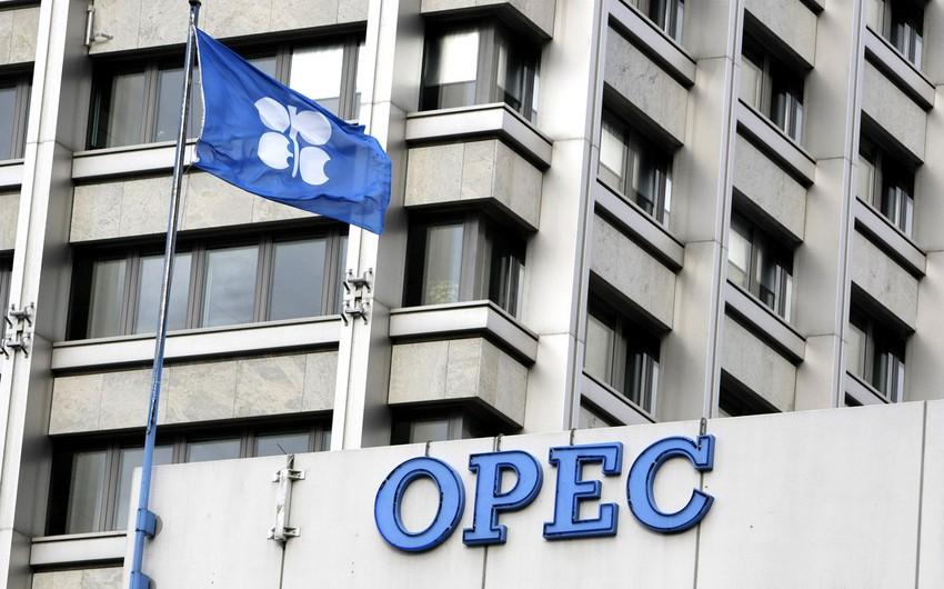 OPEC: 2040-cı ilə qədər qlobal enerji tələbatı 40% artacaq
