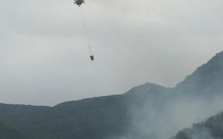 Şabran rayonunun Zöhrabkənd kəndi yaxınlığında meşəlik ərazilərdə davam edən yanğınların yayılmasının qarşısı alınıb