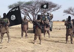 В Нигерии при нападении на кортеж губернатора погибли 15 человек