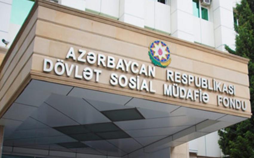 Sədr müavini: Bir müəssisədə çalışan 2000-ə yaxın işçinin hamısı ünvanlı sosial yardım alırdı