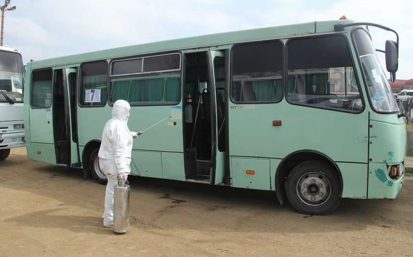 Gəncədə sərnişin avtobusları və taksilər dezinfeksiya edilir