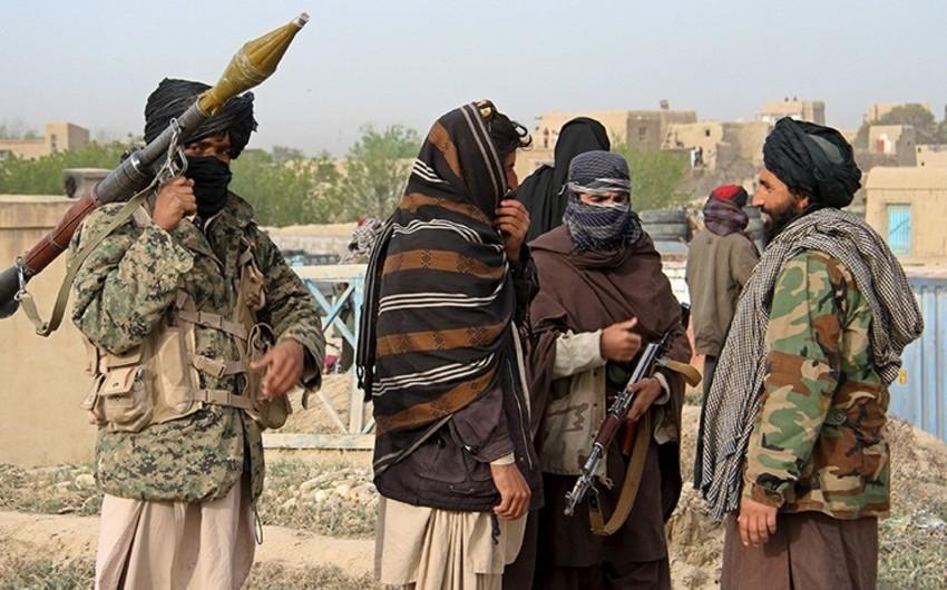 Əfqanıstanda 14 talibançı öldürülüb