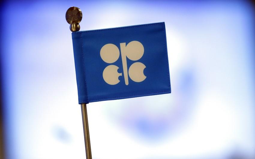 OPEC improves forecast for global oil demand