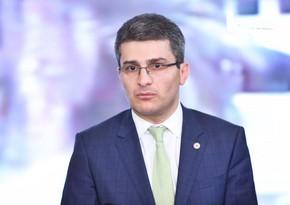 Gürcüstanın hakim partiyası və nazirindən Dmanisidəki problemə reaksiya