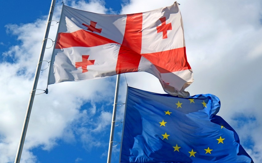 ЕС предложил партиям в Грузии провести досрочные выборы в 2022 году
