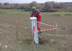 ANAMA: Обнаружено более 4 тыс. противопехотных и свыше 1 тыс. противотанковых мин