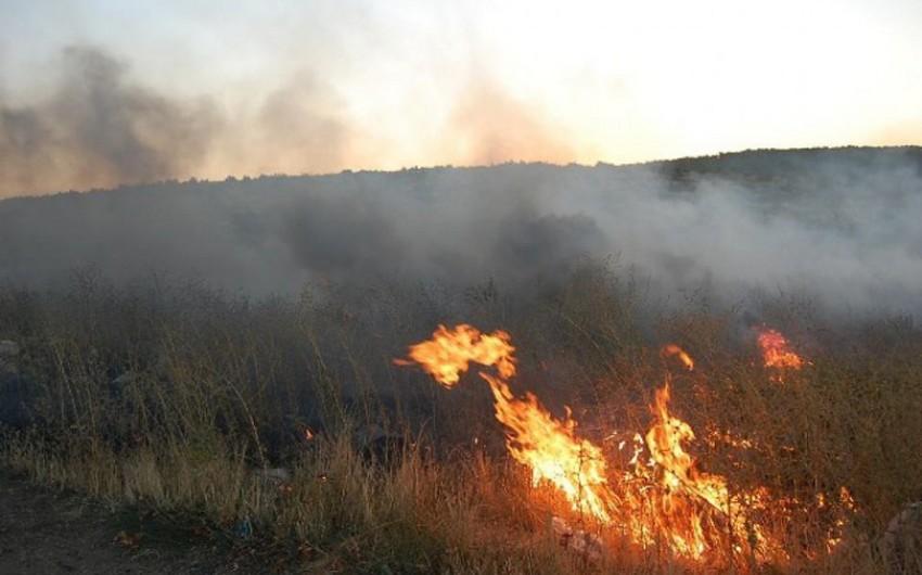 ETSN Oğuz meşəsində baş verən yanğınla bağlı məlumat yayıb