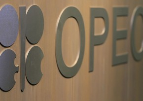 OPEC neftə tələbatla bağlı proqnozunu dəyişdirdi