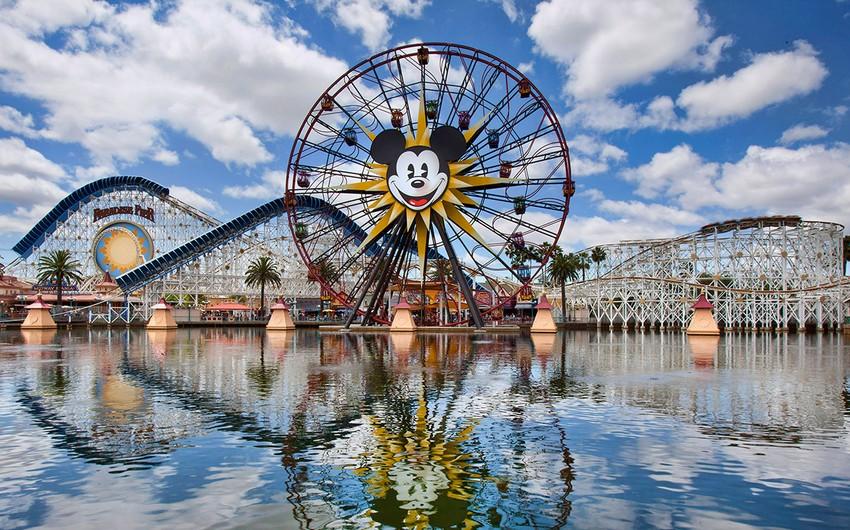 В парке Disney World в США столкнулись два автобуса, 15 пострадавших