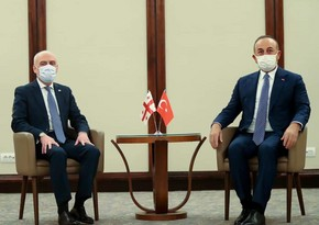 Türkiyə və Gürcüstan XİN başçıları regional məsələləri müzakirə ediblər