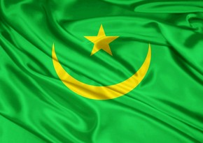 Mauritanian government resigned