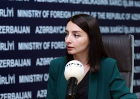 Изменена дата встречи главы МИД Азербайджана с сопредседателями