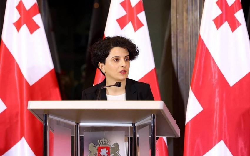 Gürcüstandakı prezident seçkiləri ilə bağlı 11 qanun pozuntusu, 171 şikayət qeydə alınıb