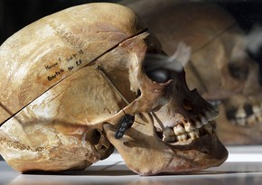 Skull museums in Europe - PHOTO