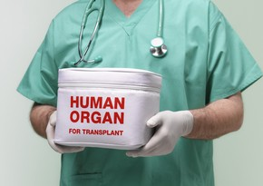 Canlı donordan transplantasiya məqsədilə hansı orqanlar götürüləcək?
