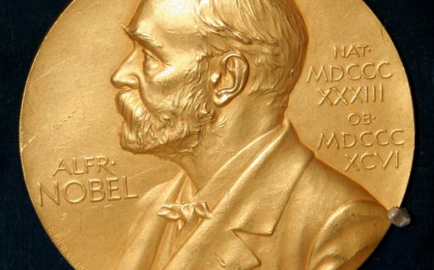 İsveçdə ədəbiyyat üzrə yeni Nobel Komitəsi yaradılıb