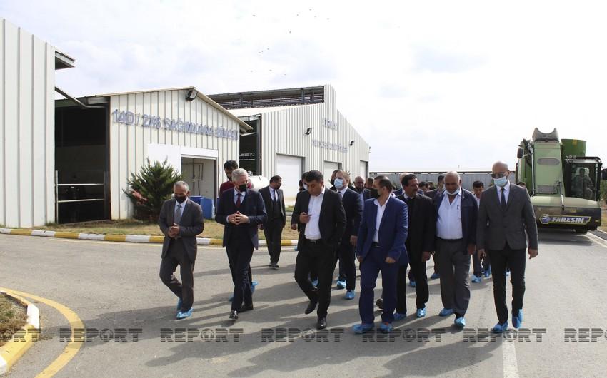 KOBİA 20 fermerin Kürdəmirdəki aqroparka infoturunu təşkil edib