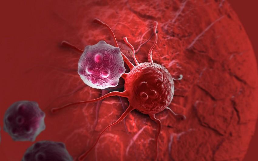 Найден белок, предотвращающий рак