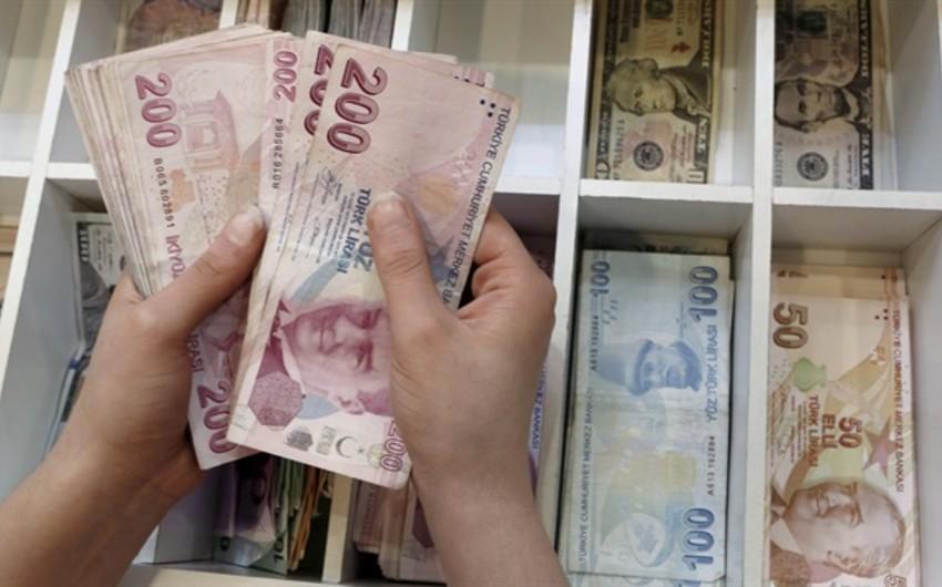 Türkiyənin beynəlxalq ehtiyatları azalıb