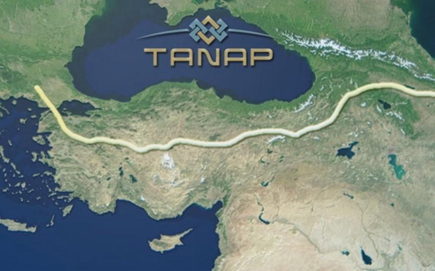 Türkiyə TANAP üzrə memorandumu ratifikasiya edib