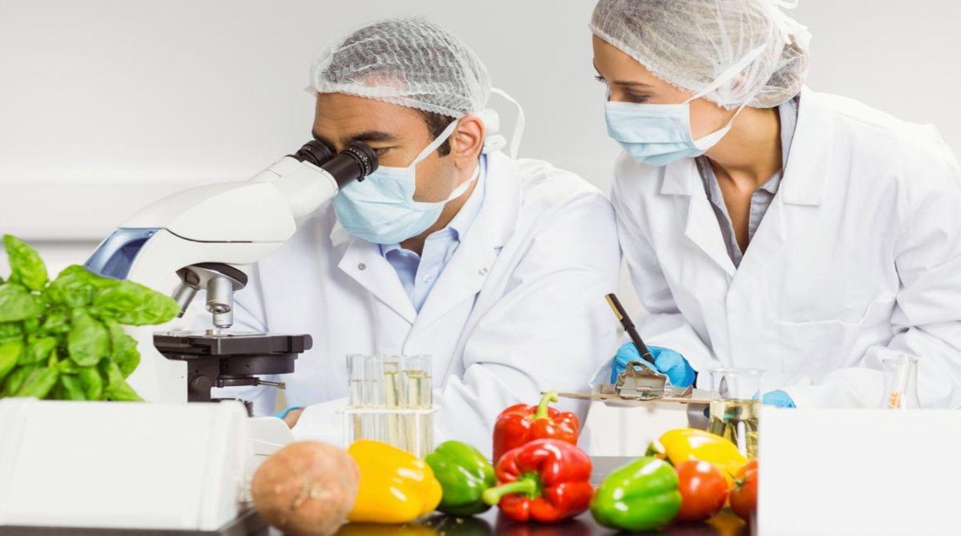 Утверждены устав и структура Института продовольственной безопасности