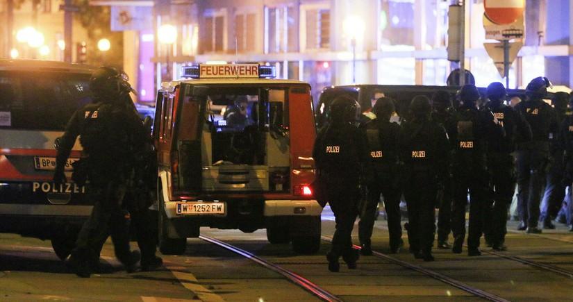 Результаты расследования теракта в Вене представят до Рождества