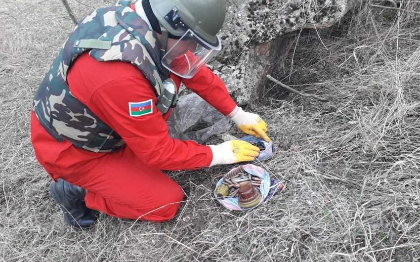 Qazaxda partlamamış hərbi sursatlar və tank əleyhinə mina partladıcısı aşkarlanıb - FOTO