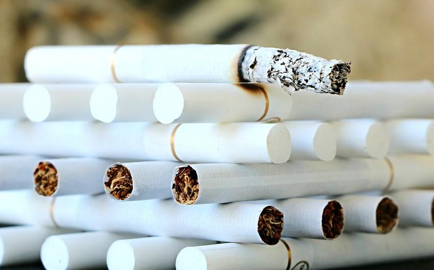 Выдача лицензий на производство табачных изделий тройка сигареты купить дешево