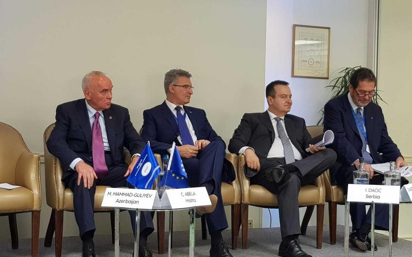 Mahmud Məmməd-Quliyev QDİƏT-Aİ əməkdaşlığı üzrə yüksək səviyyəli konfransda iştirak edib