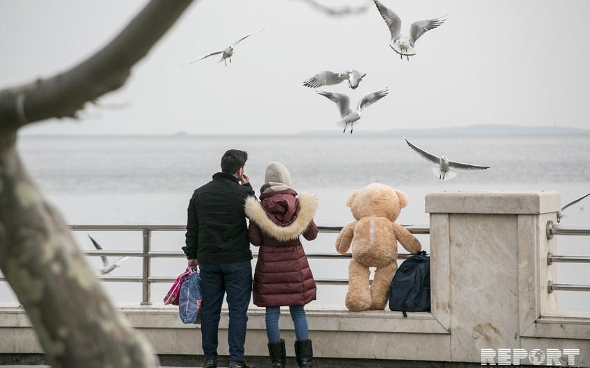 Bakıda Sevgililər günündən - FOTOREPORTAJ - VİDEO - YENİLƏNİB