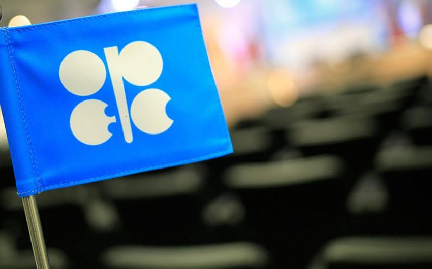 Bloomberg: Azərbaycan OPEK-in hasilatın azaldılmasına dair sammitində iştirak edəcək