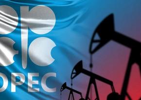 ОПЕК: Нефтяному сектору потребуется почти $12 трлн инвестиций