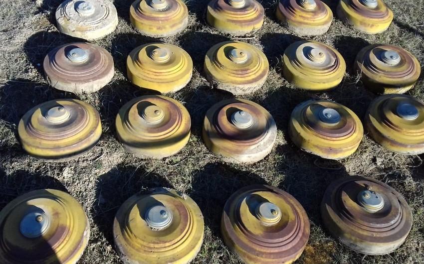 В прифронтовой зоне обнаружены сотни неразорвавшихся боеприпасов