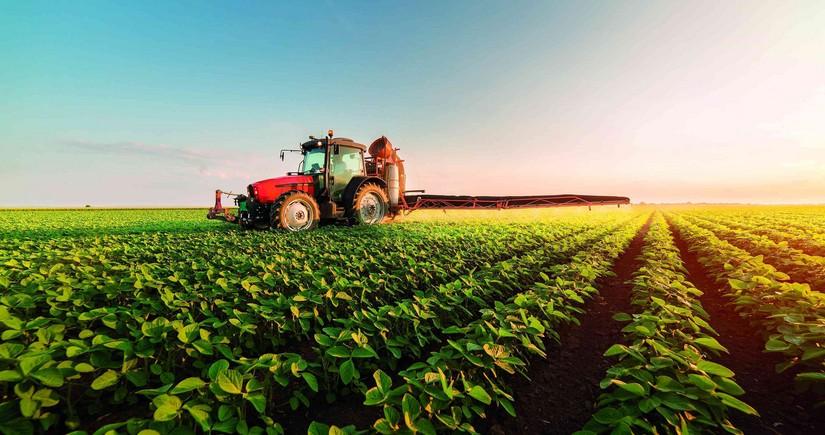 Аграрный сектор в Азербайджане вырос почти на 2%
