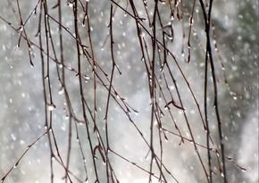 Sabah Bakıda hava küləkli olacaq, bölgələrə yağış, qar yağacaq