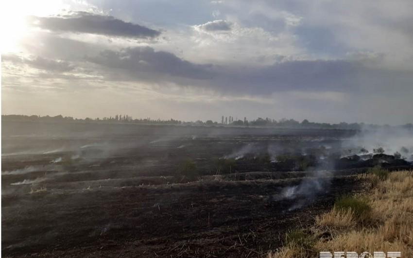 В Шабранском районе произошел пожар на скошенном поле