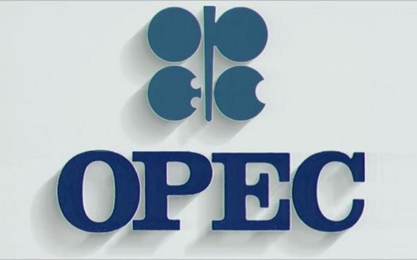 OPEC-in neft hasilatı mayda artım göstərib