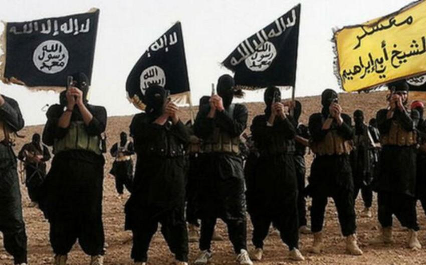Əfqanıstanda İŞİD-in 615 üzvü təslim olub