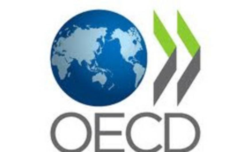 OECD: Məktəblərin İT təchizatı müvəffəqiyyət dərəcəsini artırmır