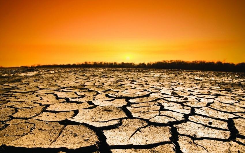 BMT: Qlobal istiləşmə dünya iqtisadiyyatına 240 milyard dollar ziyan vuracaq