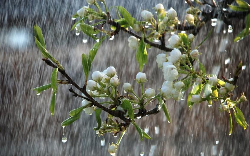 Sabah Azərbaycanın rayonlarında intensiv yağış yağacaq, dolu düşəcək