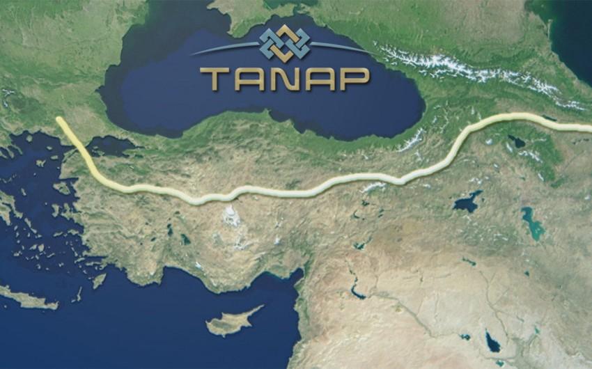 Подрядчики проекта TANAP освобождены от НДС