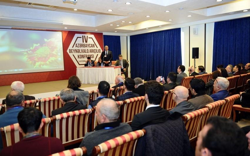 Bakıda V Azərbaycan Beynəlxalq Arıçılıq Konfransı keçiriləcək
