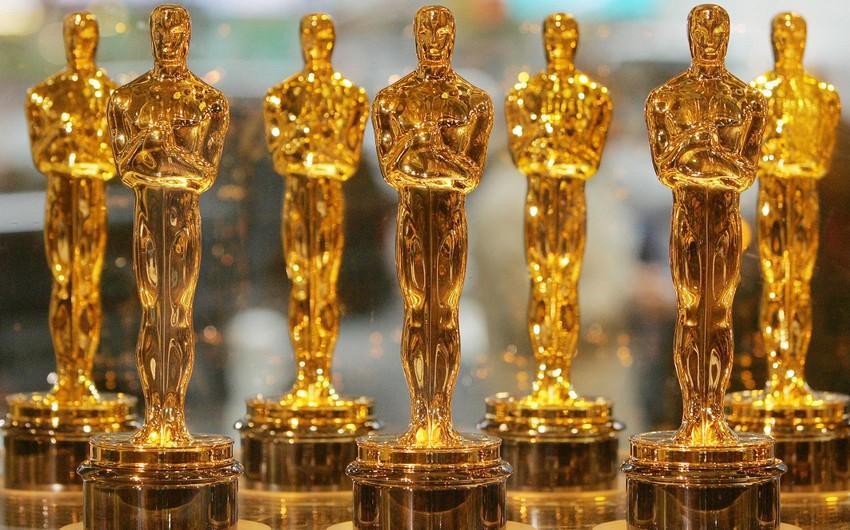 Mənim müəllimim - səkkizayaqlı ilbiz sənədli filmi Oskar mükafatı aldı