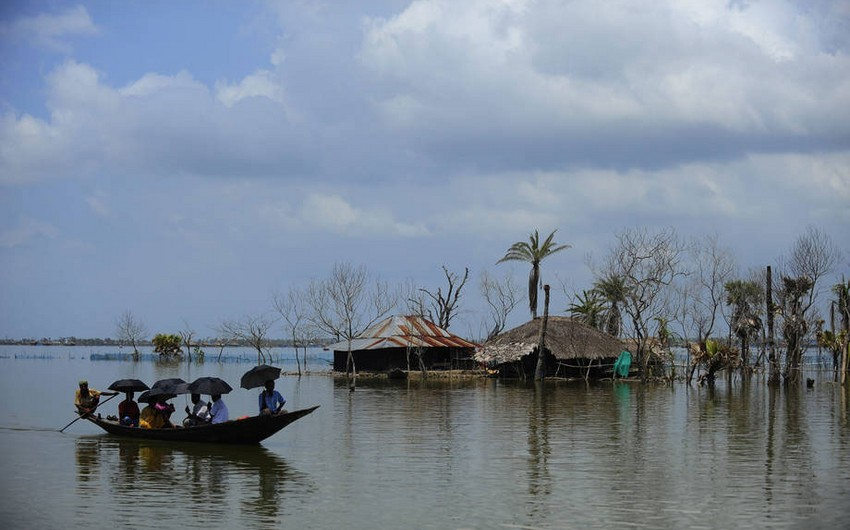 ÜST: İqlim dəyişiklikləri hər il 250 min nəfərin həyatına son qoyacaq