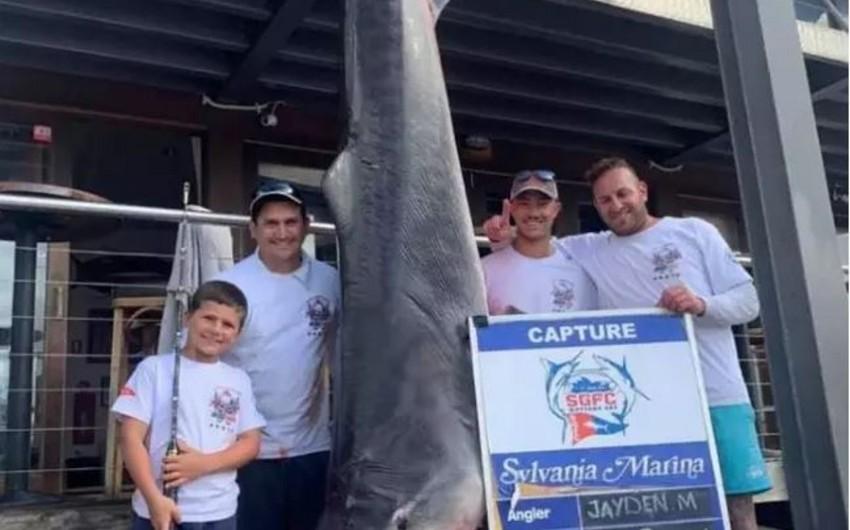 Восьмилетний мальчик поймал гигантскую акулу в Австралии - ФОТО - ВИДЕО